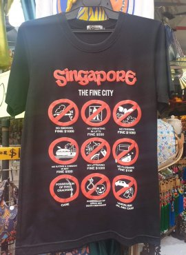 7 Laws You Should Know About Singapore