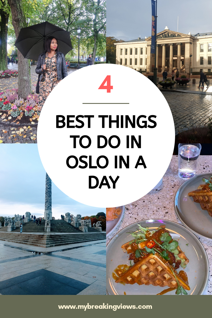 a DAY IN OSLO